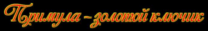Примула-первоцвет