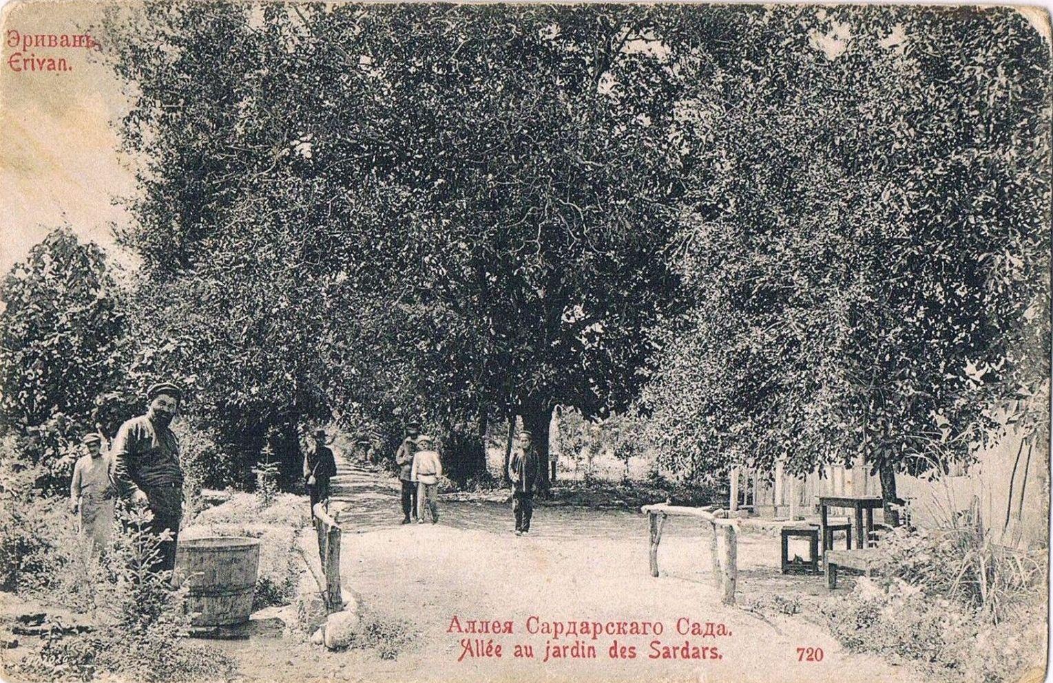 Аллея Сардарского сада