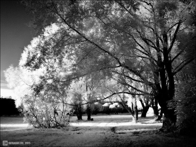 Сказочное Покровское-Стрешнево