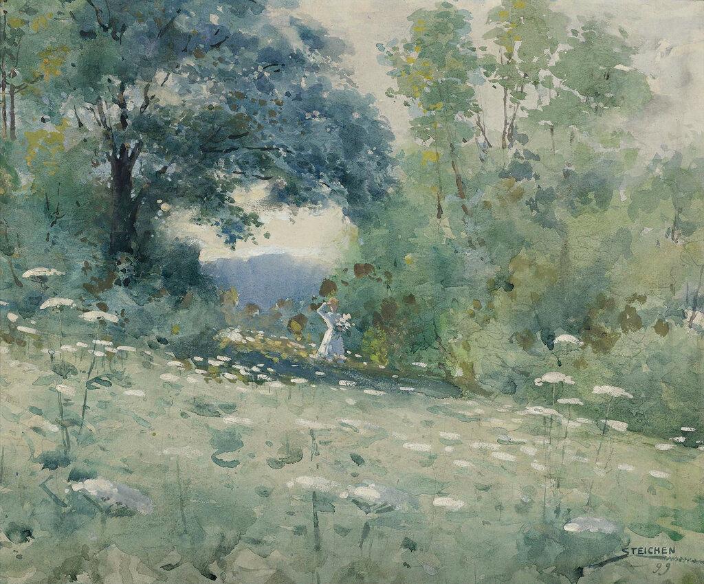 Edward Steichen - Lady in a Flower Field, 1899.jpeg