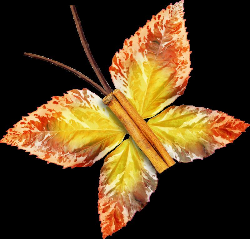 Carena_Autumn Crunch_40.png