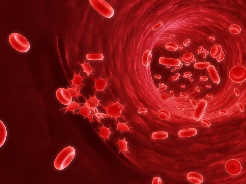 Ученые: рак разрушительно влияет насердце даже без лечения