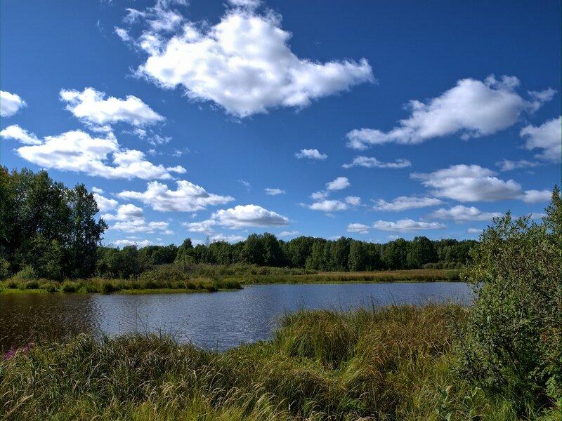 пойменное озеро