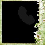 Весенний сад (74).jpg