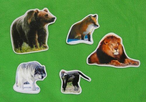 Развивающий коврик Семьландия... карточки Дикие Животные