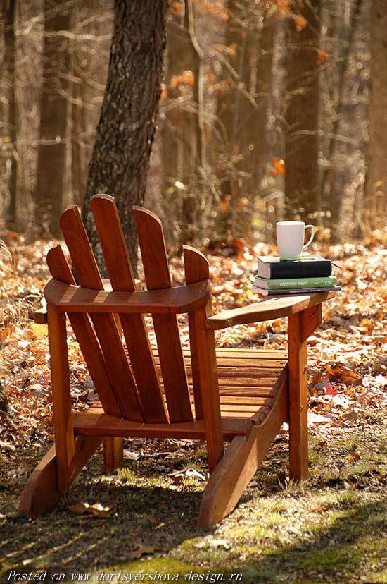 осенний лес, кресло, чашка