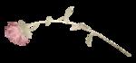 Scrap - Petite Elyne 0_73b54_76901dc5_S