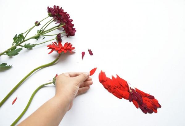 Экзотические птицы созданные из лепестков цветов