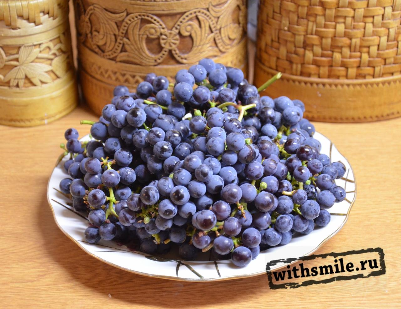 выращиваем виноград в Московской области