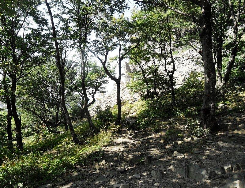 На седловине у горы Индюшка