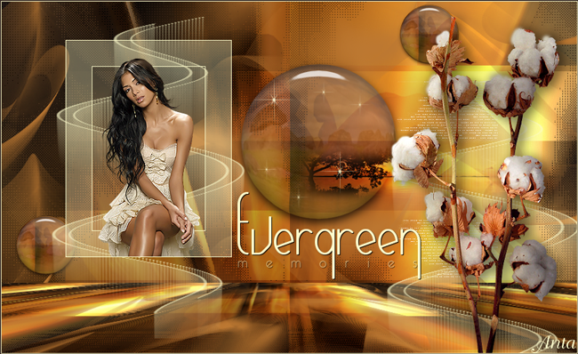 Alpha_EvergreenPSP9работа1.png