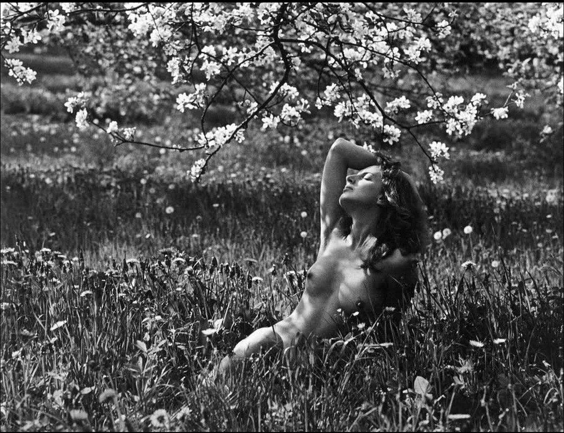 1970-е. Ромуальдас Ракаускас. Цветение