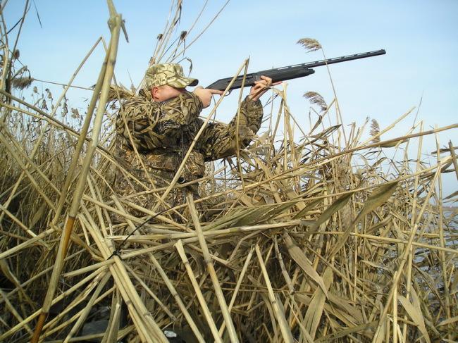 ВТюменской области разработают сайт для охотников