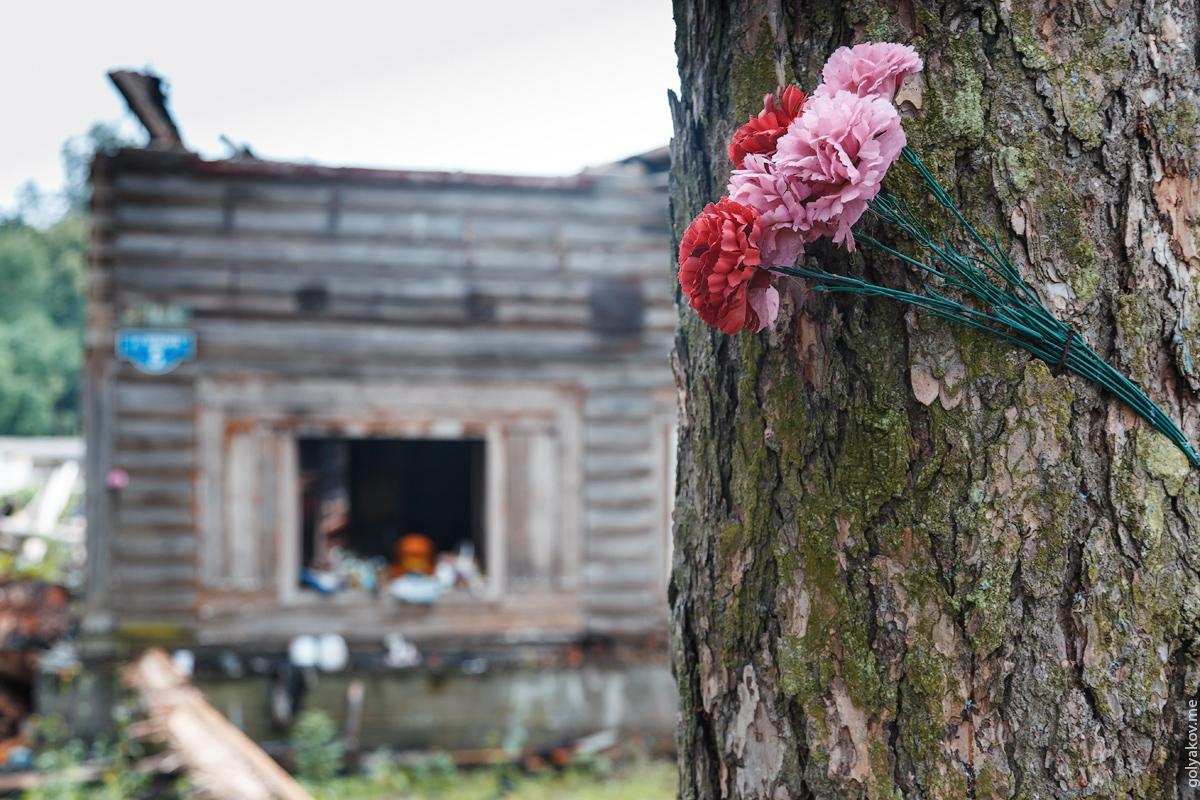 пожар дружноселье, погибли люди