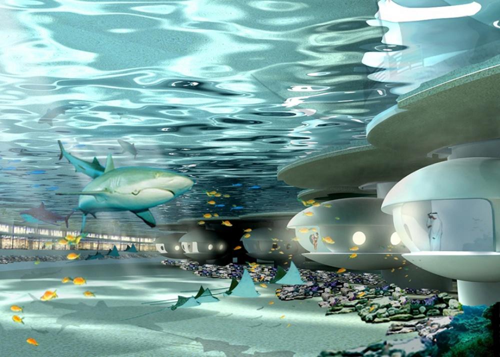 Область развлечений незнает границ: архитекторы бюро «103International» разработали проект подводн