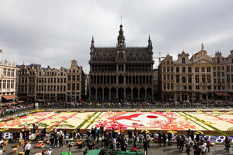 Ковер из 600 тысяч цветов в Брюсселе