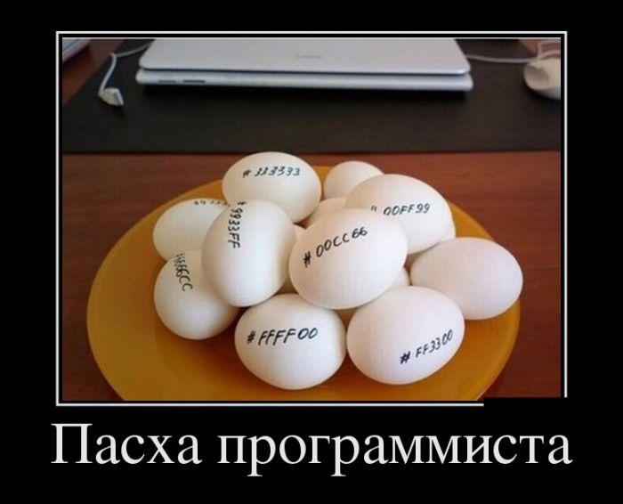 Яйца программиста