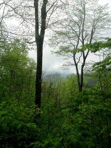 Весна, в горах ... SAM_6914.JPG