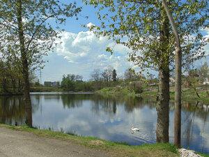 Озеро и его обитатели...