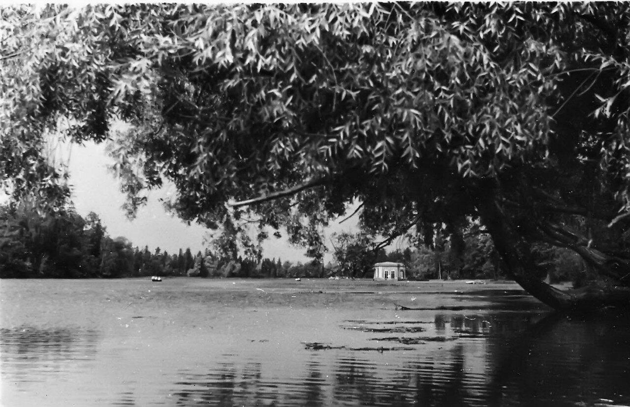 1952. Вид на Белое озеро в Гатчинском парке