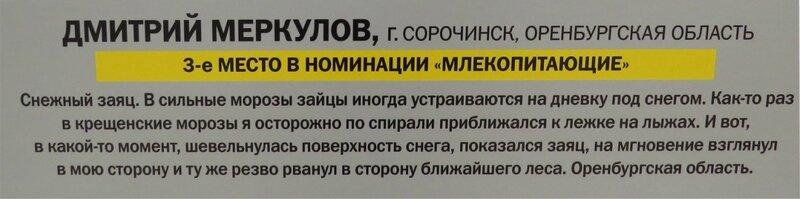 https://img-fotki.yandex.ru/get/482931/140132613.6a6/0_241087_f74e1165_XL.jpg
