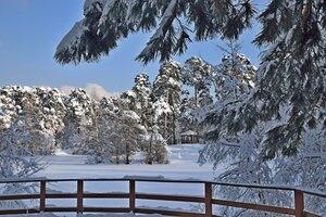 Земля оделась в снежные наряды.