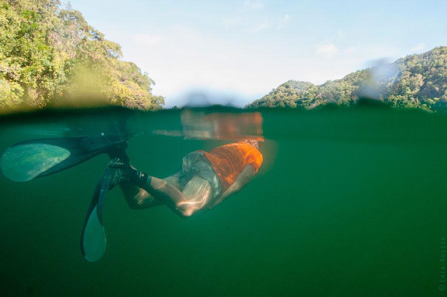 Озеро медуз образовалось около 12 000 лет назад в результате движения земной коры. По сути, это