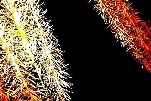 Это не зимний лес. Это - занавески в моей квартире при фотовспышке.А за ними открывается бескрайний Космос!..