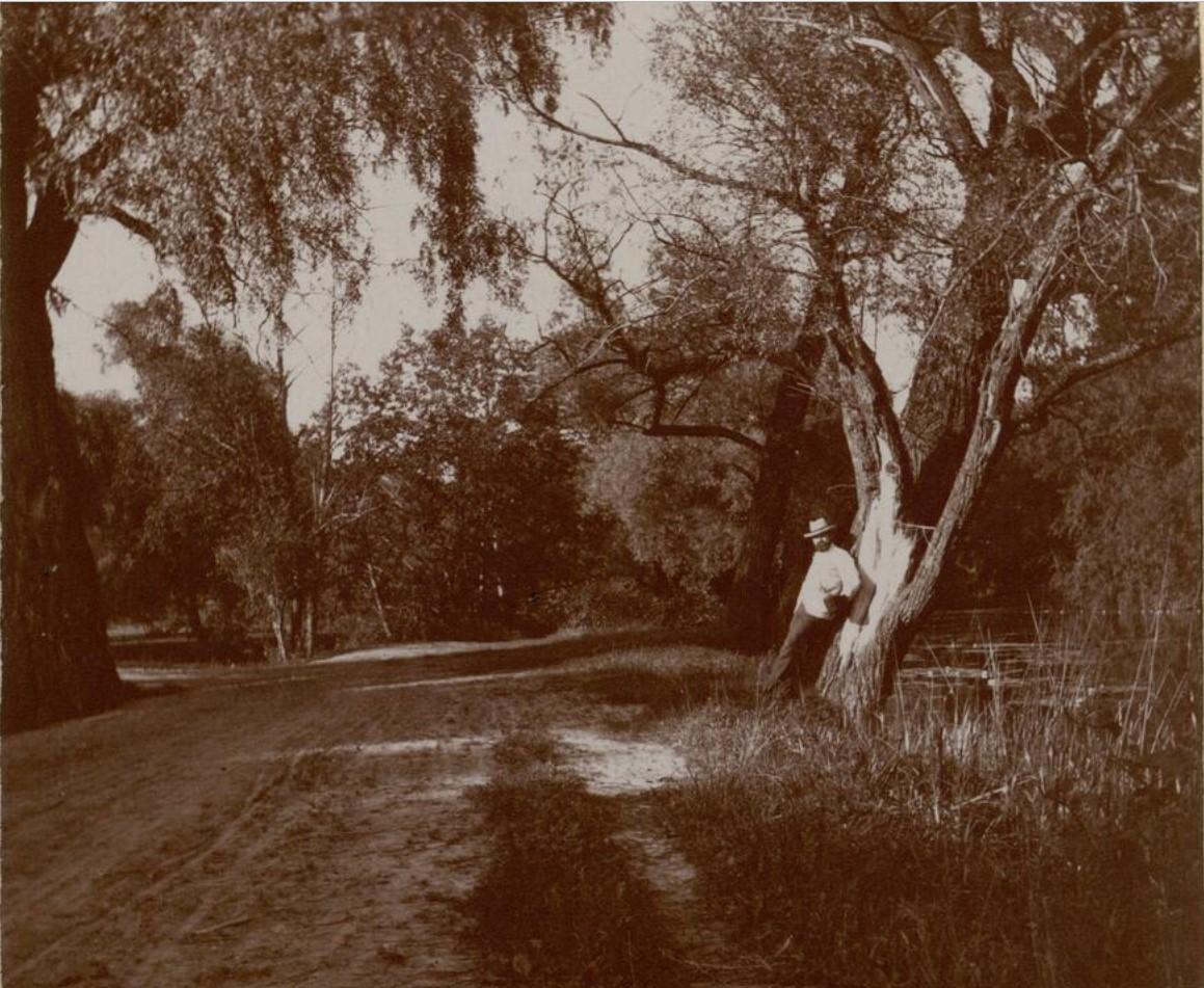 06. В парке