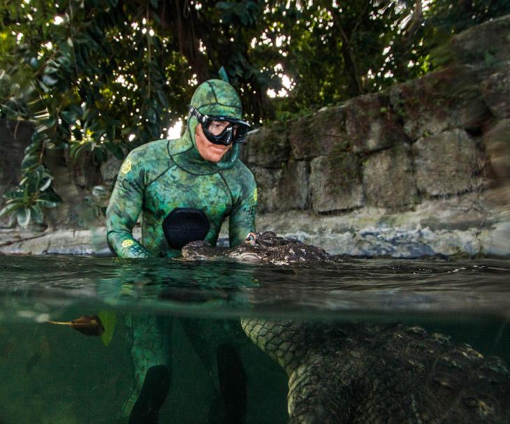 Селфи с зубастым хищником – аллигатором! (6 фото)