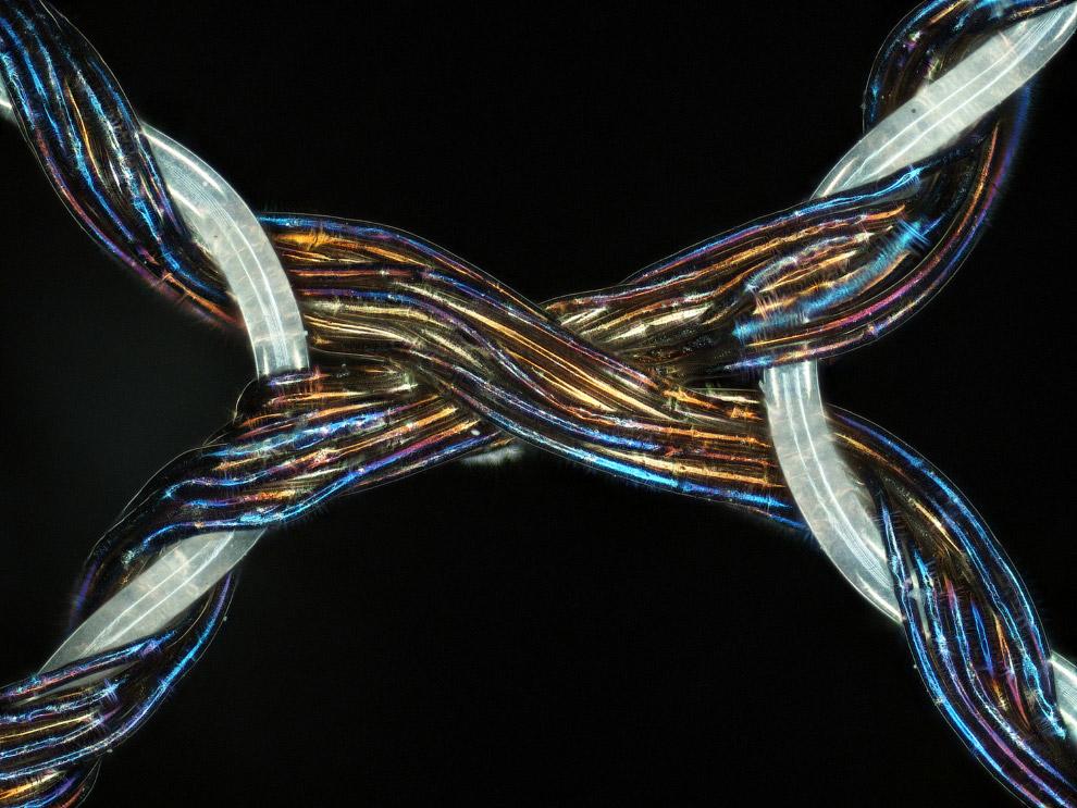 21. Жидкий кристалл, увеличенный в 500 раз. (Фото Michael Tuchband, Boulder, Colorado):