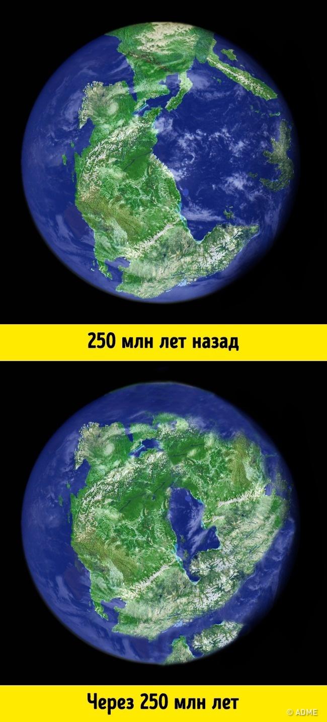 Факты с картинками