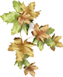 Autumn Gold #10 (103).png