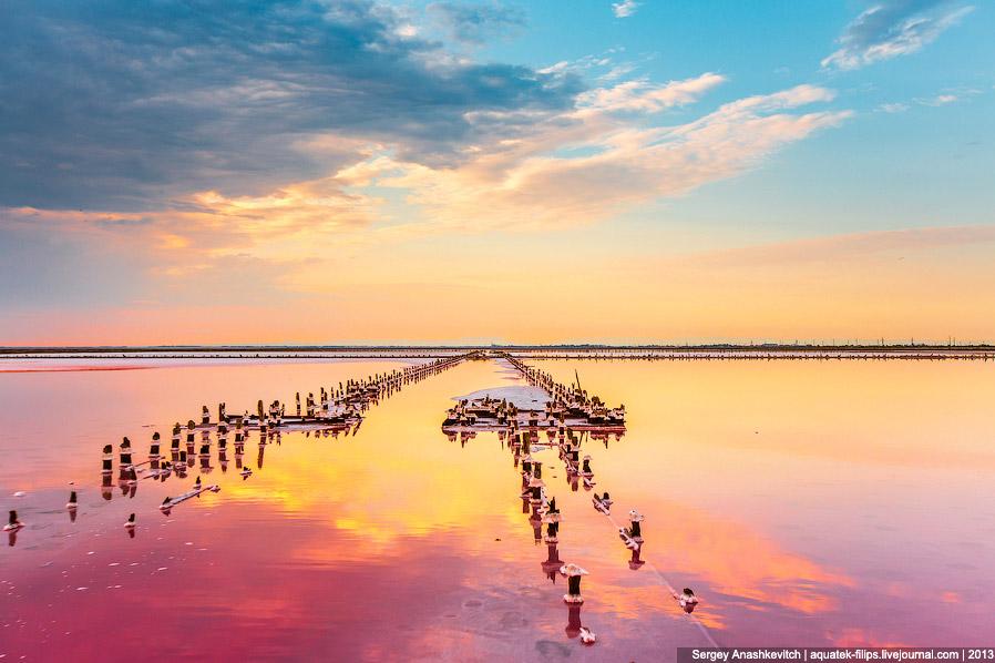 15. Некоторые столбики так обросли солью, что похожи на соляные цветы: