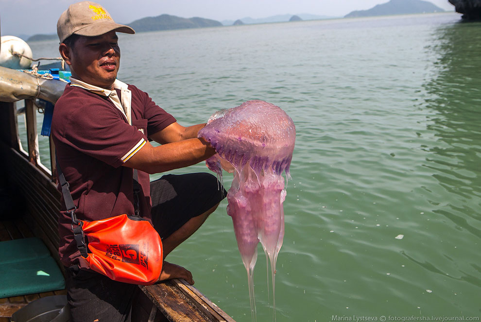 Когда вы путешествуете по Пханг Нга на лодке, островов кажется намного больше, чем 42. Местные