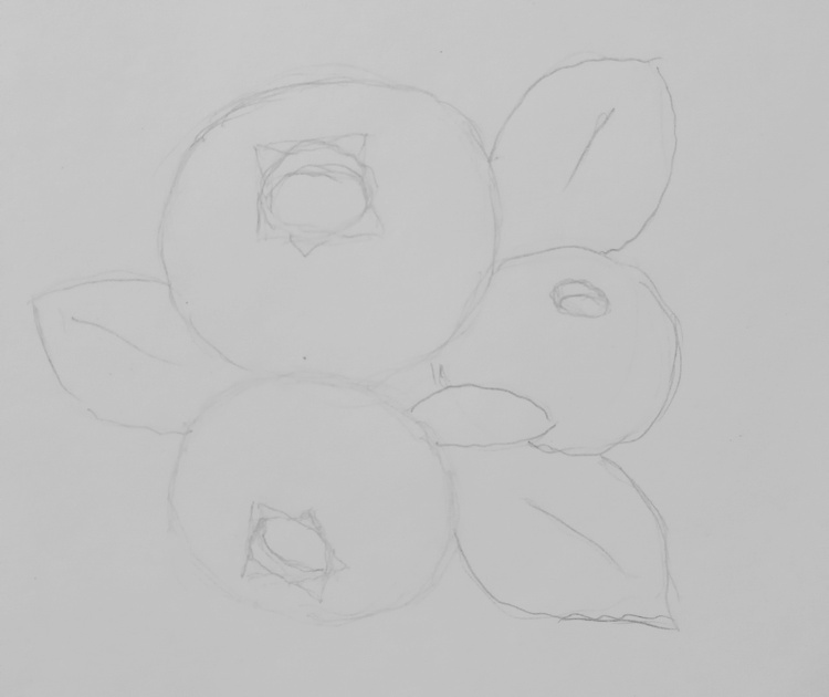 Экспресс-курс по рисованию