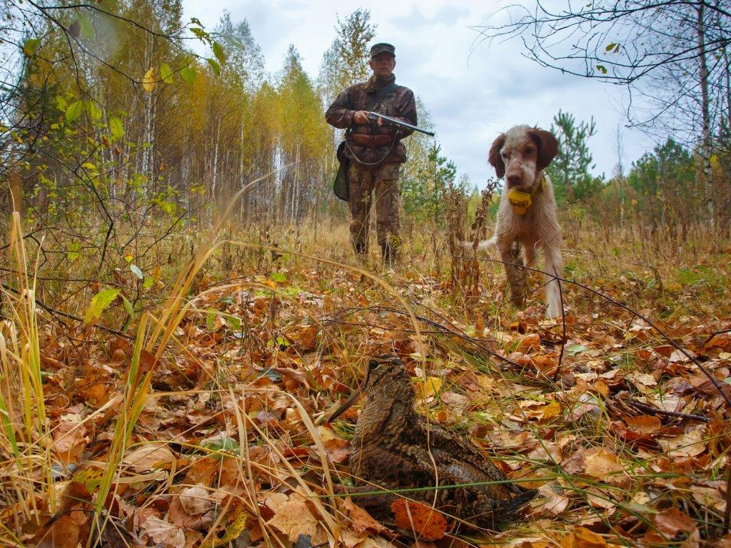 Сложности охоты осенью
