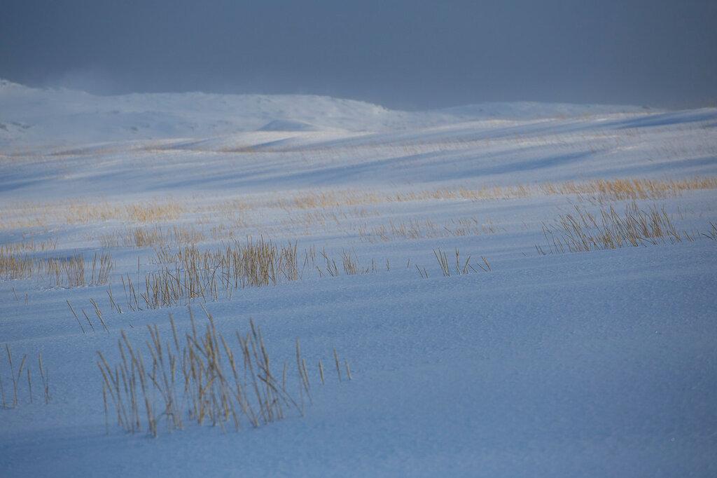 Зимнее Заполярье-3.Река ждет. IMG_2526.jpg