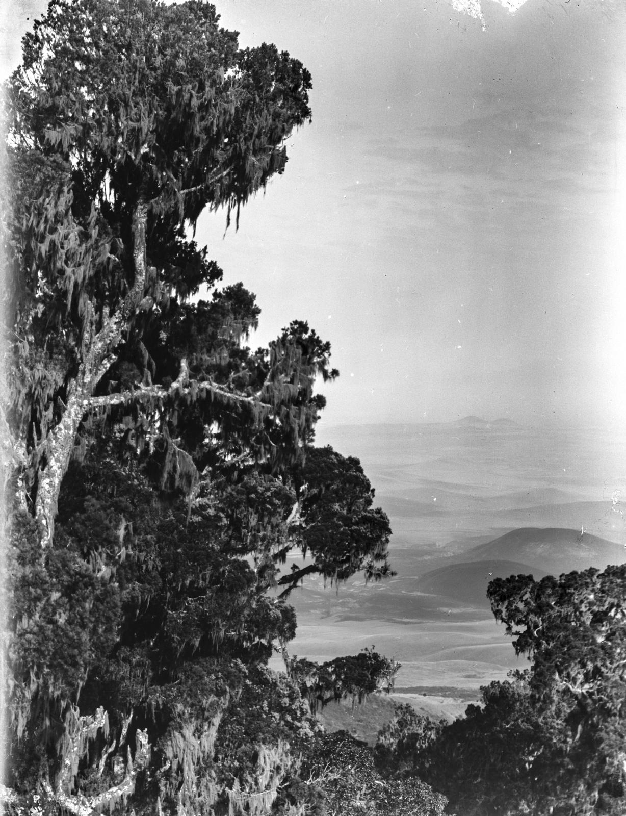 166. Вид с западного склона горы Меру
