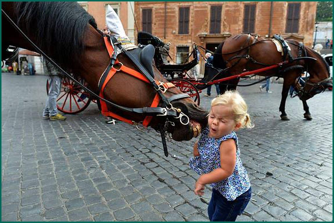Девочка и лошадь 1150 (рамка цветная)