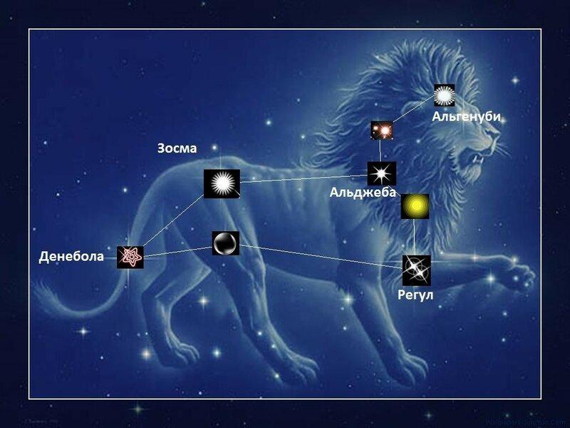 Среди звёзд первой величины регул ближе других расположен к эклиптике , поэтому его довольно часто покрывает луна.