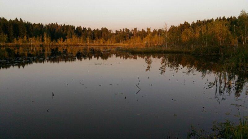 Закат на Пчелинском озере