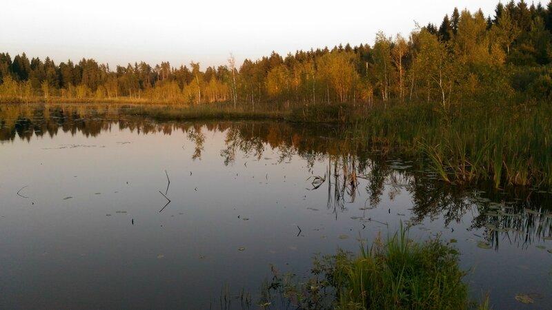 Берега, Пчелинское озеро