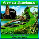 Как загрузить музыку на AudioJungle.