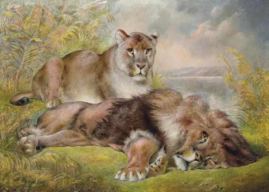 Resting lions , 1881.Jpeg