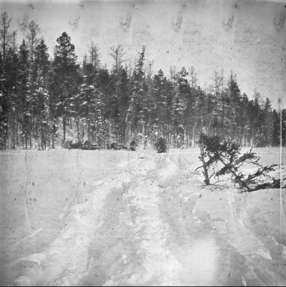 114. Зимний берег