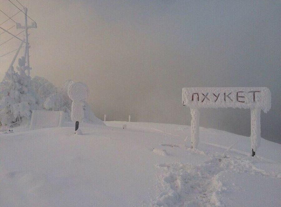 Подборка интересных и веселых картинок 25.01.18