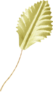 листочки