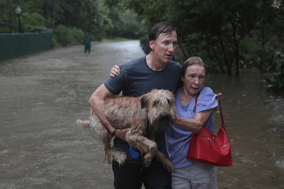 11. Эту фотографию мы уже видели вчера. (Фото Adrees Latif | Reuters):