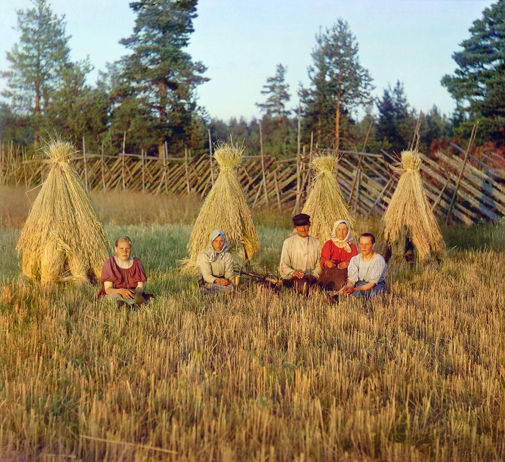 9. На жнитве. Вологодская губерния, 1909 г.